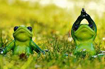 yoga-frogs